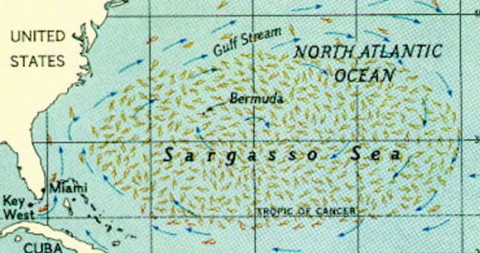 sargasso-map-b
