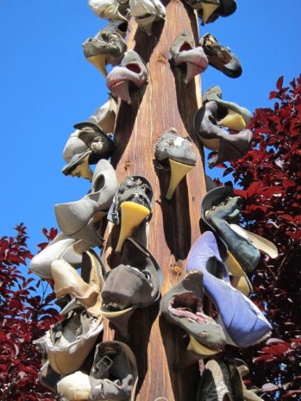 Shoe Pole