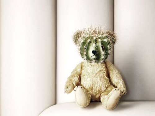 xcactus-teddy-bear-worst-toy-ever.jpeg.pagespeed.ic.USGUJMZyLI